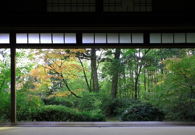 京都大阪新幹線格安切符