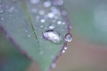 梅雨洗濯物除湿機